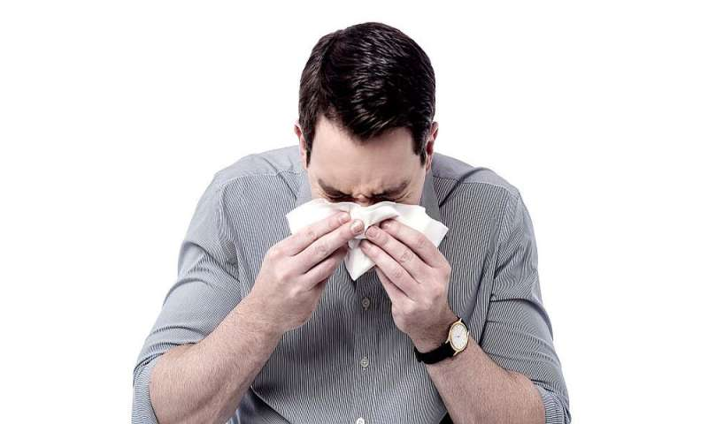 House dust mite immunotherapy effective for allergic rhinitis