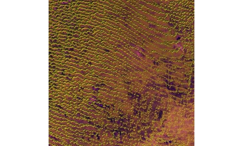 Image: Rub' al Khali desert on the southern Arabian Peninsula