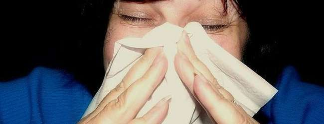 Interferon shows promise as flu therapy
