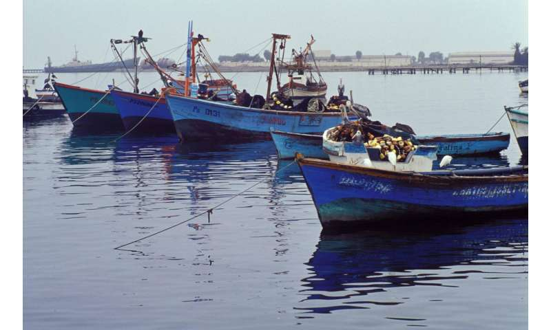 Investing in fisheries management improves fish populations