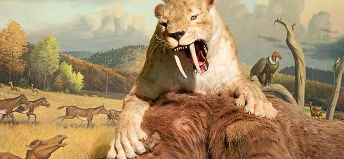 Is a saber-tooth cat's roar worse than it's bite?