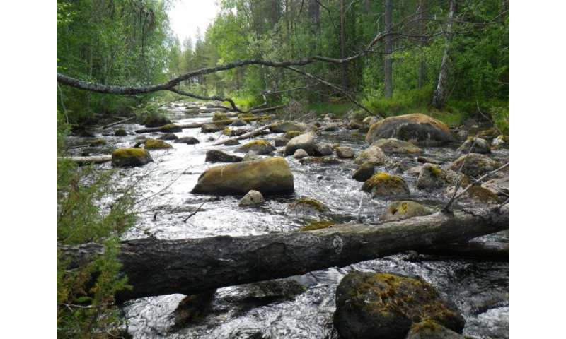 It takes patience to restore watercourses