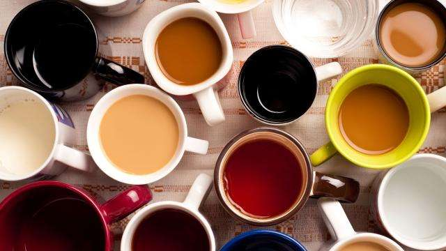 Java gene study links caffeine metabolism to coffee consumption behavior