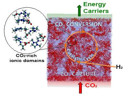 Keeping captured carbon dioxide in liquid makes it more reactive and easier to concentrate