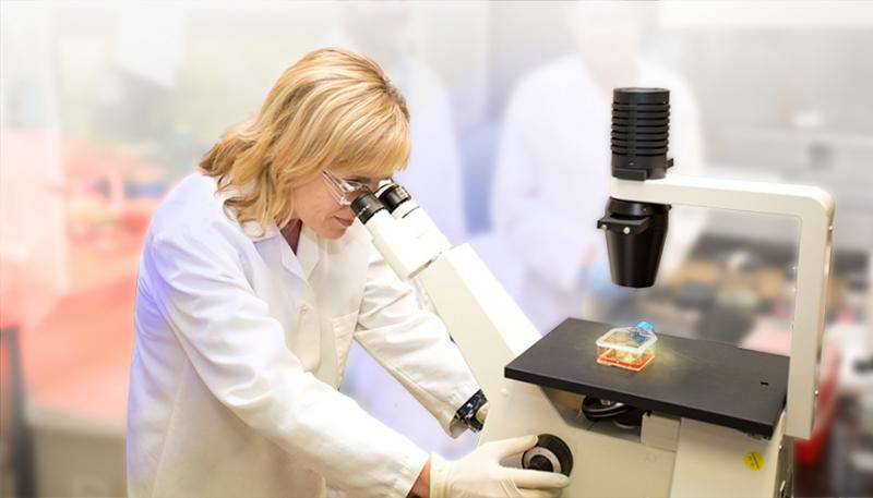 Lab researchers hunt for clues in transmission of deadly Middle Eastern respiratory virus