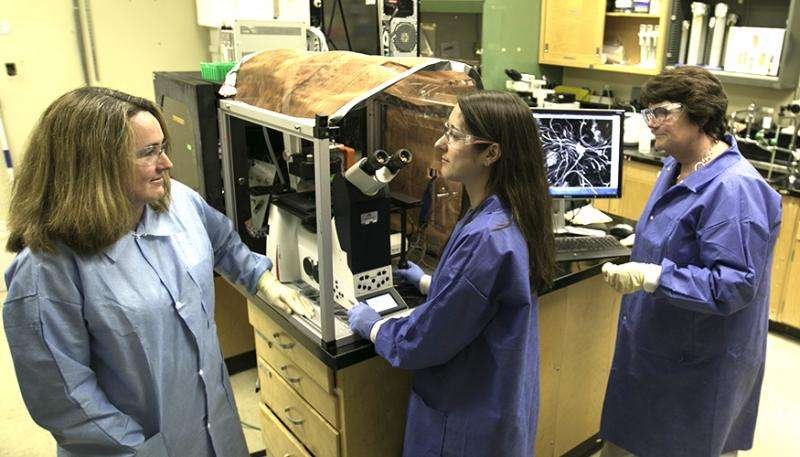 Lab team measures peripheral nervous system activity with microchip-based platform