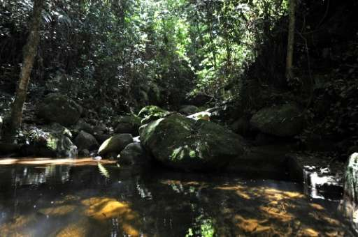 "La Tigra National Park, seven kilometers (five miles) northeast of Tegucigalpa, serves as green ""lungs"" and a cooling"