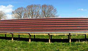 Let's roll: Material for polymer solar cells may lend itself to large-area processing