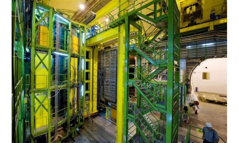 LHCb unveils new particles