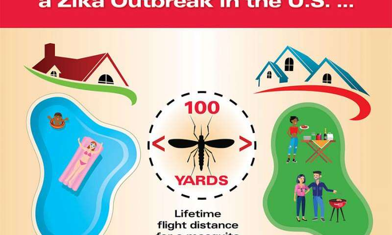 Likelihood of widespread Zika outbreak in United States low