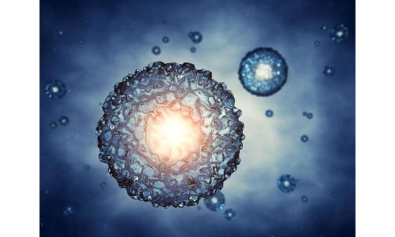 Lower live birth rate with minimal stimulation IVF