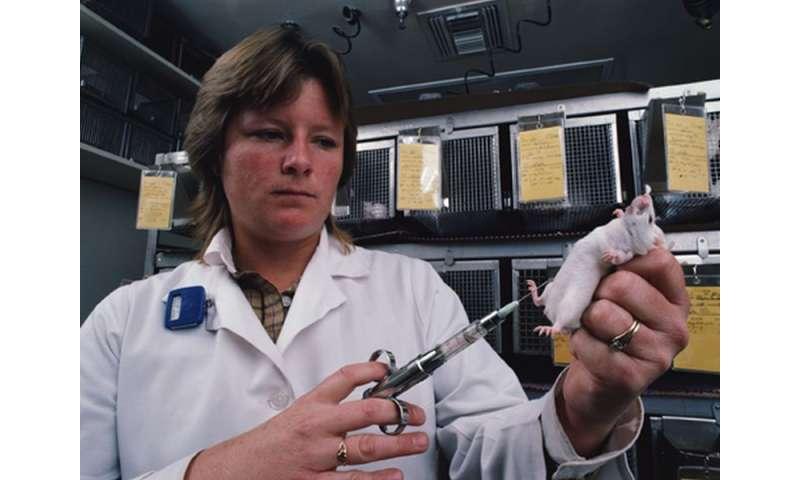 Macrophage COX-2 prevents diabetic nephropathy progression