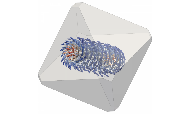 Magnetic vortices defy temperature fluctuations
