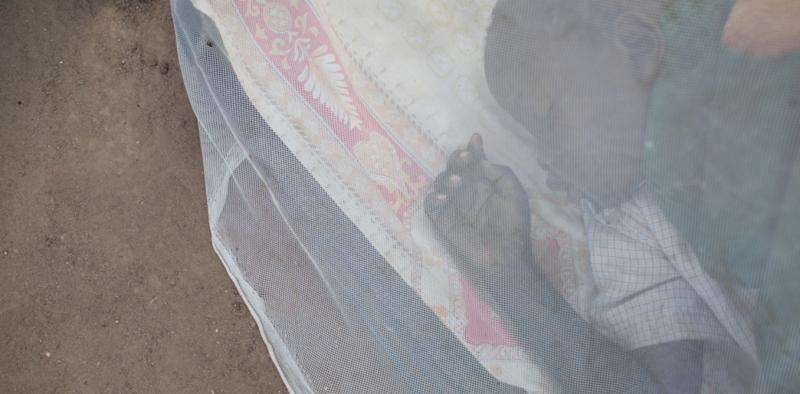 Malaria—should we abandon insecticide-treated bednets?