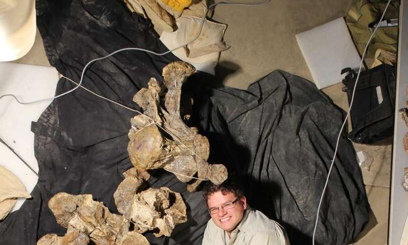 Meet Savannasaurus, Australia's newest titanosaur