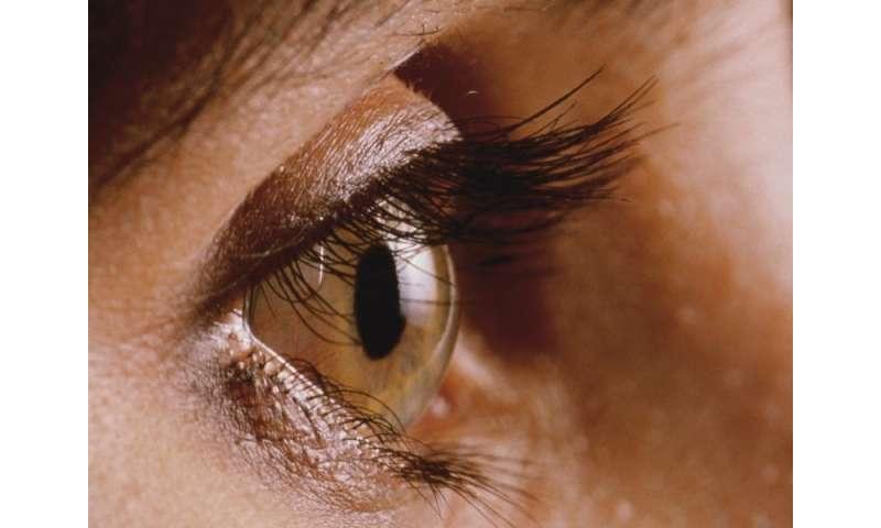 Membrane-tube shunt device can reduce intraocular pressure