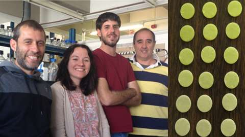 Microbial biosensor designed to evaluate water toxicity