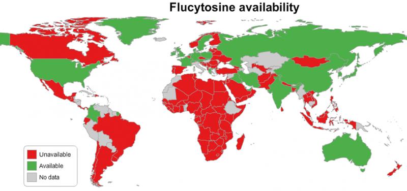Millions deprived of life saving antifungal medicines, report finds