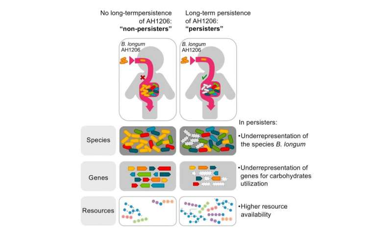 Mix and match microbes to make probiotics last