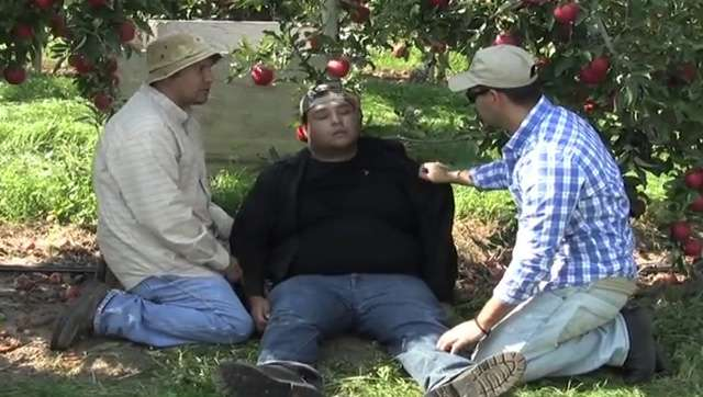 More Washington state agricultural workers injured in hot weather