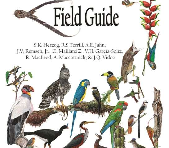Museum of Natural Science researchers publish the first birds of Bolivia field guide