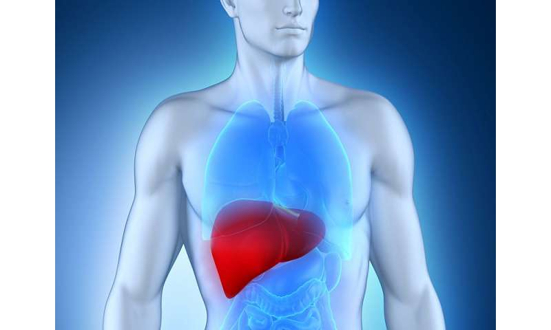 NAFLD linked to unfavorable metabolic profile in T2DM