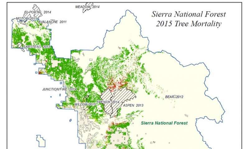 NASA maps California drought effects on Sierra trees