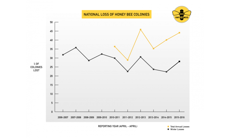 Nation's beekeepers lost 44 percent of bees in 2015-16