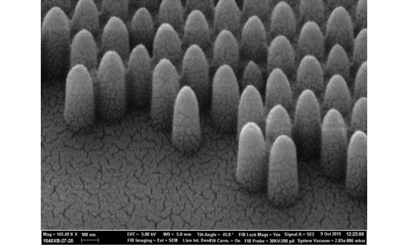 Nature inspired nano-structures mean no more cleaning windows
