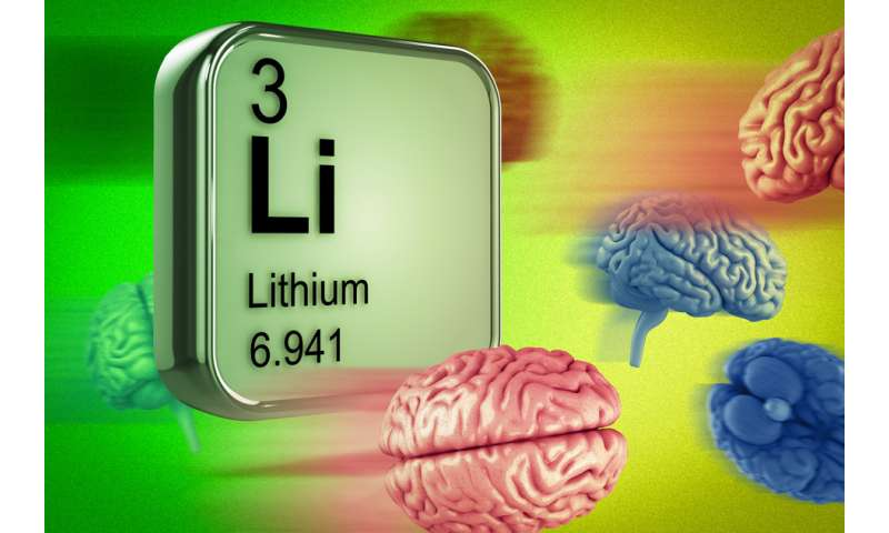 New clue to how lithium works in the brain