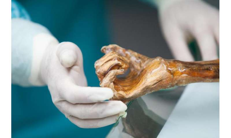 New discoveries concerning Ötzi's genetic history