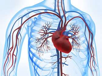 New drug more effective in treating atrial fibrillation