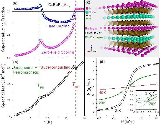 New ferromagnetic superconductors AEuFe4As4 (A = Rb, Cs)