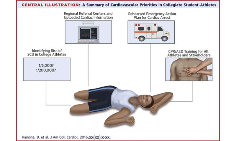 New guidance on preventing sudden cardiac death in athletes published