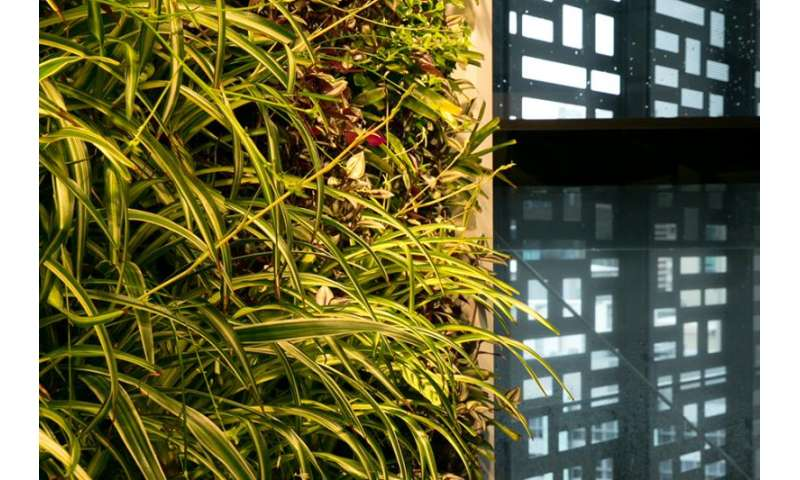 New guide a world-first template for greening urban roofs and walls