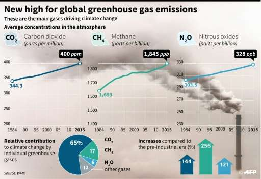 New high for global greenhouse gas emissions