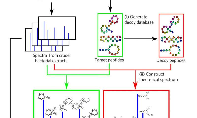 New method helps identify antibiotics in mass spectrometry datasets