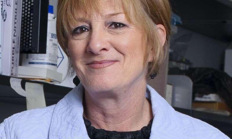 New partnership to study link between olfaction and neurodegenerative disease