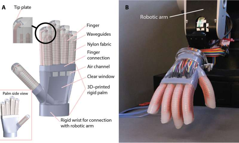 New robot has a human touch