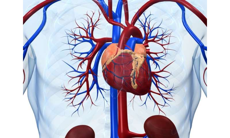 Noncardiovascular cause of death more common in CHD patients