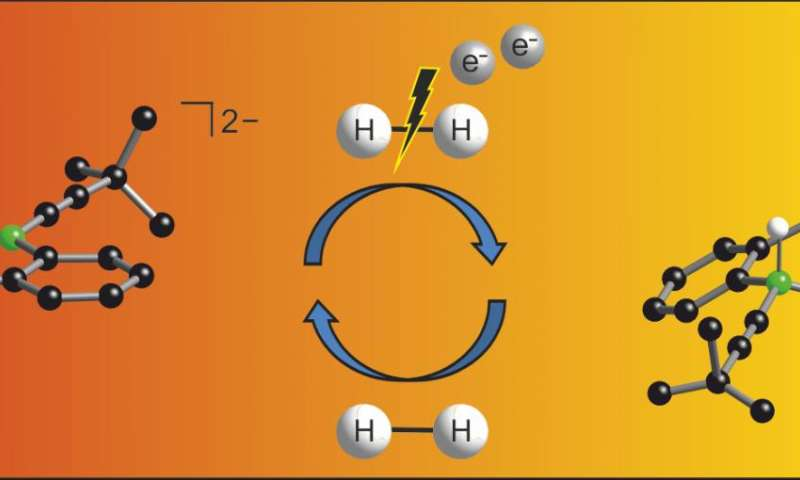 Non-metal catalyst splits hydrogen molecule