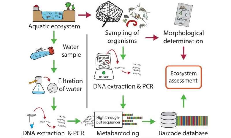 Novel genetic tools for bioassessment of European aquatic ecosystems, COST grant proposal