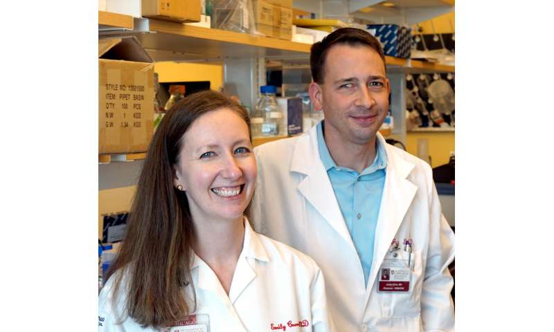 Novel immunotherapy approach shows promise in blood cancers