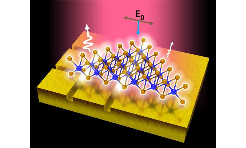 NUS scientists develop method to improve photoluminescence efficiency of 2-D semiconductors