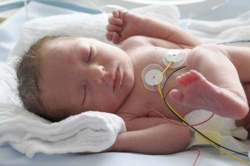 Parents of premature babies get confidence boost from home-from ...
