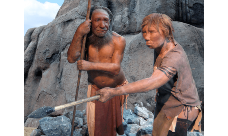 Paying a heavy price for loving the Neanderthals