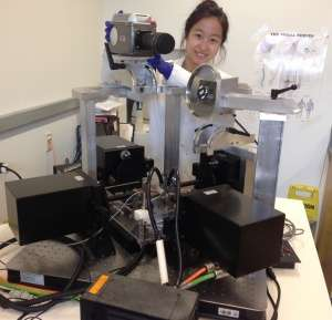 Penn Engineers Use Network Science to Predict How Ligaments Fail