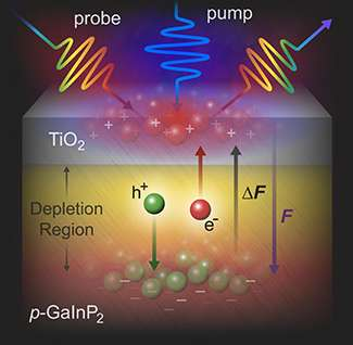 Photoelectrodes revealed