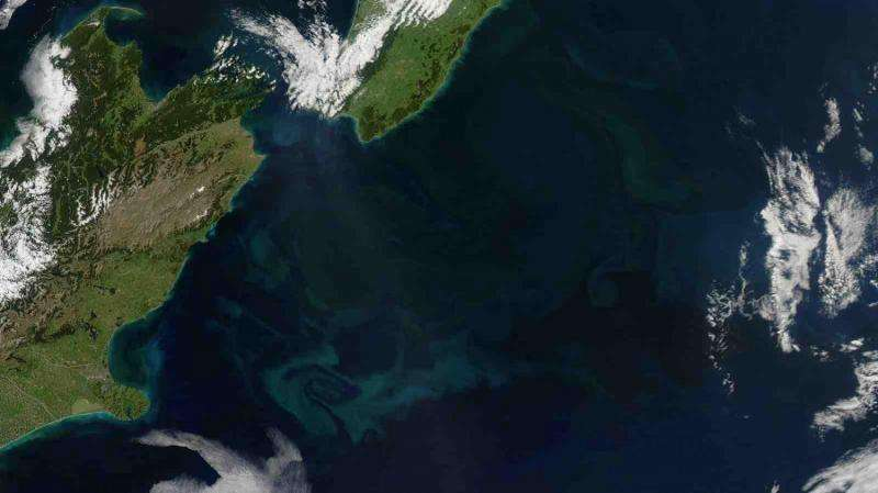 Plankton blooms in New Zealand suggest the ocean is responding to climate change