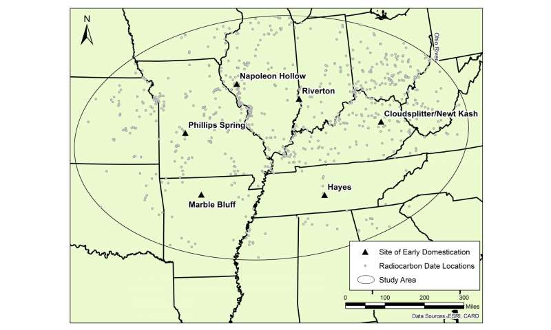 Population boom preceded early farming